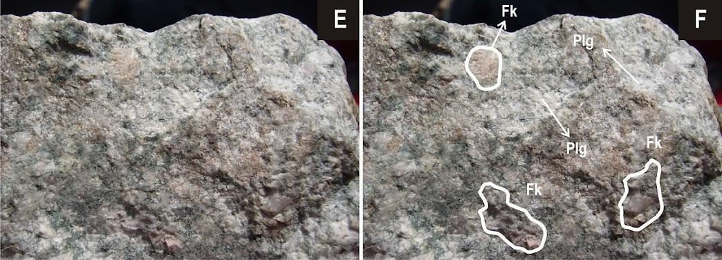 Diferencia principal entre la plagioclasa (colores blanquecinos) y la ortosa o feldespato alcalino (rosáceo claro)