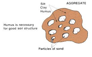 Hyda budak berkaca mata soil structure for Soil particles definition