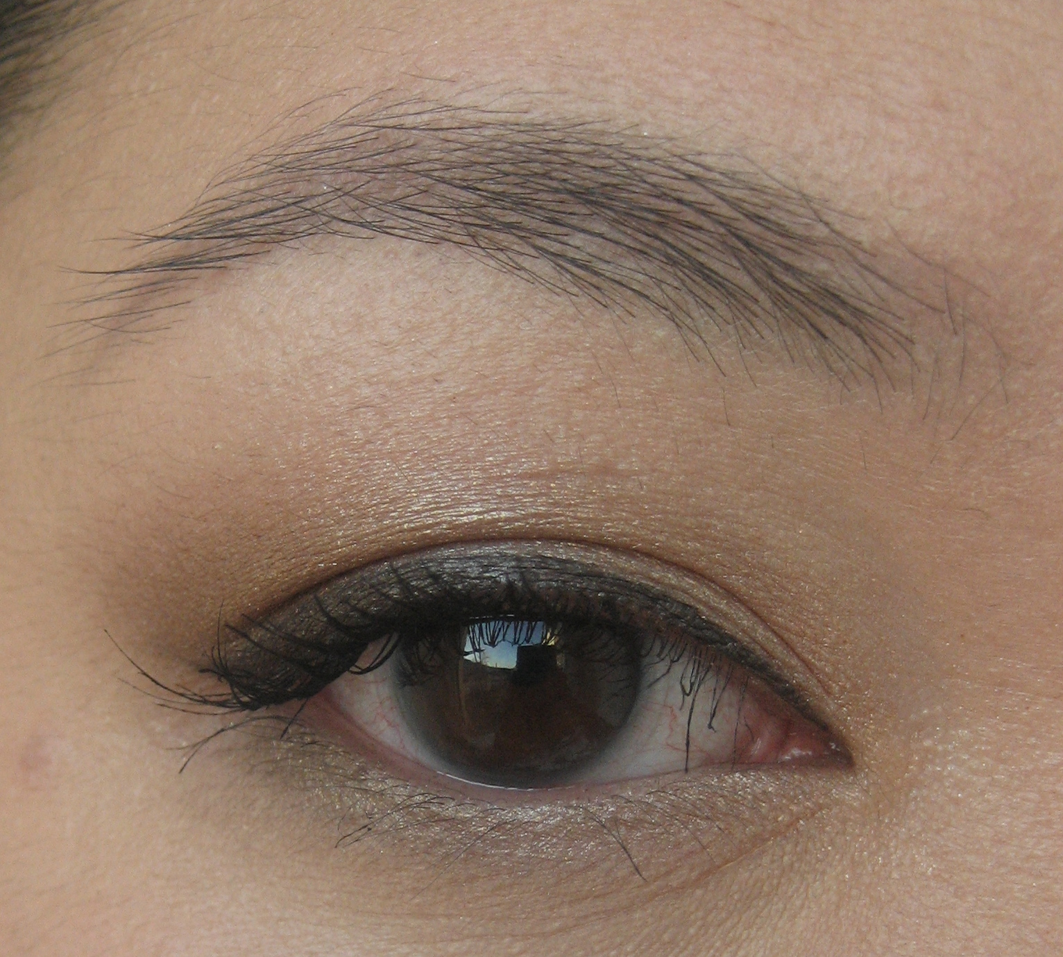 Le Stylo Ultra Slim Liquid Eyeliner by chantecaille #14