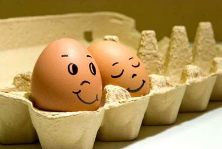 Hình ảnh vui về quả trứng