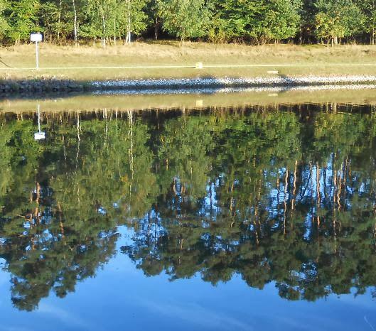Baum-Spiegelung mit Kilometer-Schild am Main-Donau-Kanal