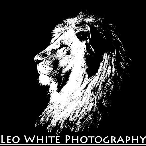 Tyson White Photo 6
