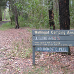 welcome to Wallingat River camping ground
