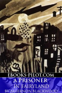 Cover of A Prisoner In Fairyland