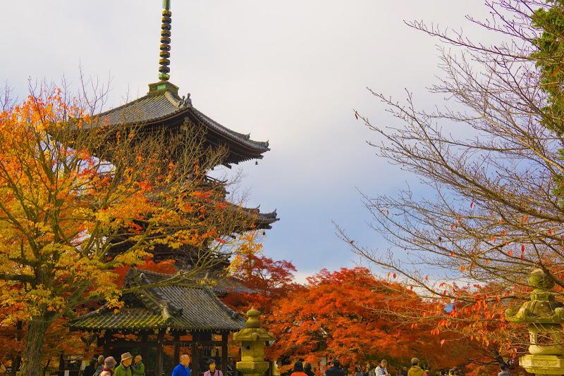 京都 紅葉 真如堂 写真2