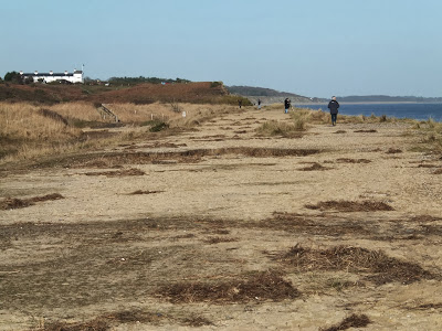 Flattened dunes by the Northern Sea Wall to Minsmere