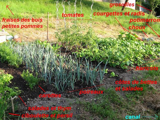 Une coulée verte 13.07.16-jardin%25281%2529