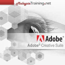 Adobe Illustrator CS6 Training Course