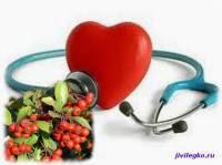 Боярышник для сердца