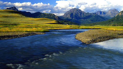 Soda Butte Creek, Lamar Valley, Yellowstone National Park, Wyoming.jpg