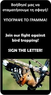 CYBirdTrappingPetition