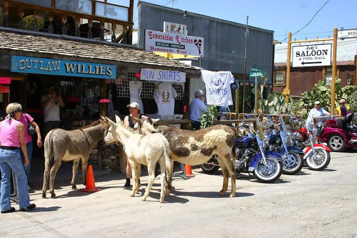 El pueblo de los burros, Oatman, Arizona