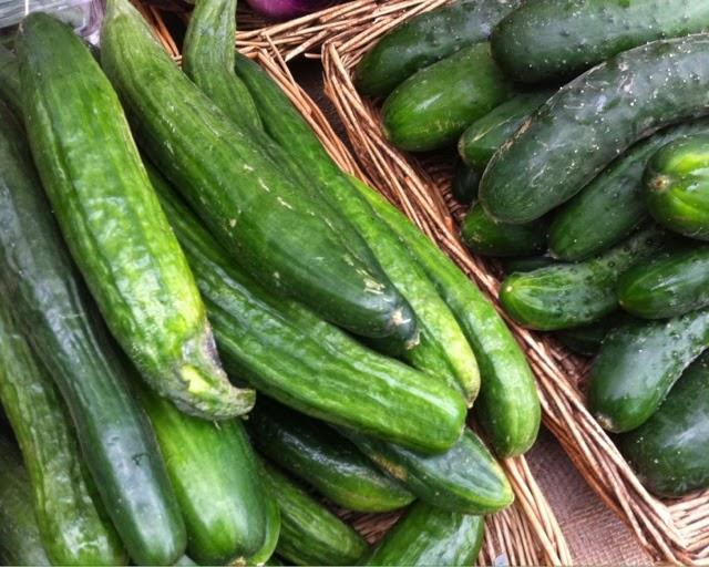 Brockley Market - cucumber