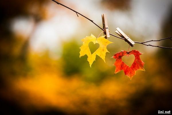 thơ mùa thu lá rụng