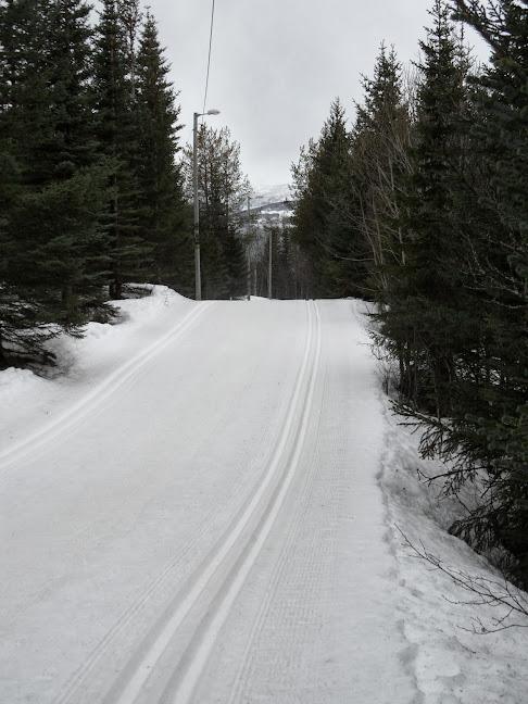 Norvège mars 2014 SAM_1532