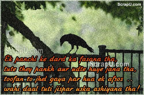 Dil Se Shayari Cards
