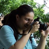 Foto de perfil de Alinne