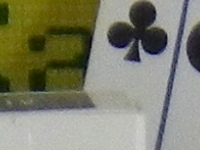 Pentax WG-1 Sample Image