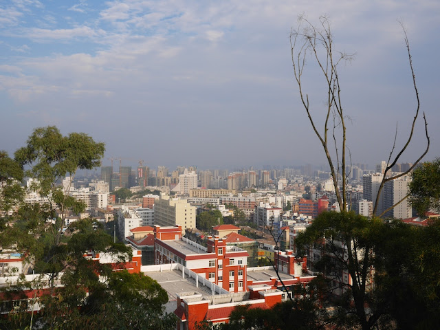 urban view with many buildings