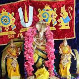 Vaikasi Thiruvadirai - Aandvan Thirunakshatram 2014