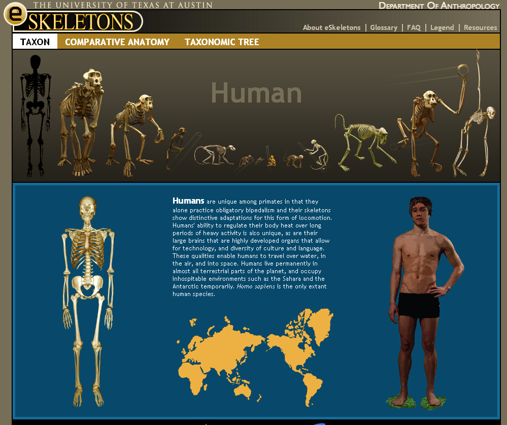 Educational Technology Guy Eskeletons Skeletons And Comparative