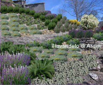 Progetti giardini privati progetti balconi e terrazzi foto di aiuole e piccoli giardini idee - Idee giardino senza erba ...