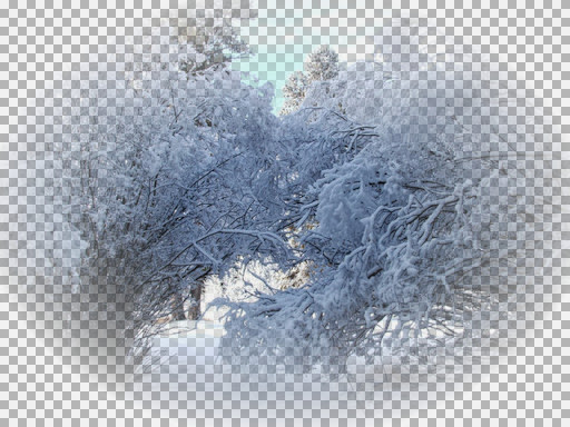 KS_Snow trees 1.jpg