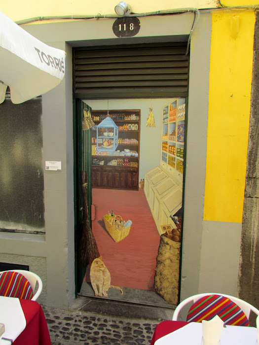 the cat in the store - Santa Maria street in old town