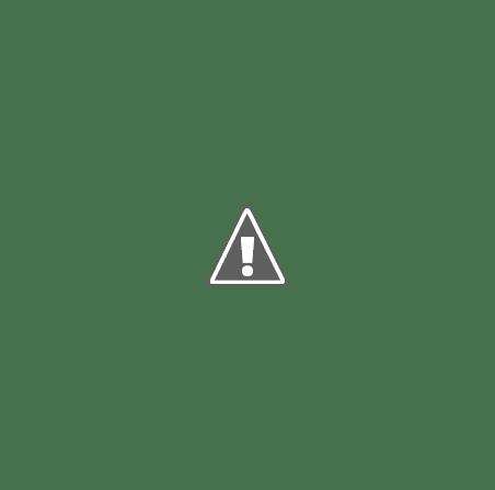 PSD ceausescu iliescu nastase ponta Cancerul PSD, în adevărata lui splendoare