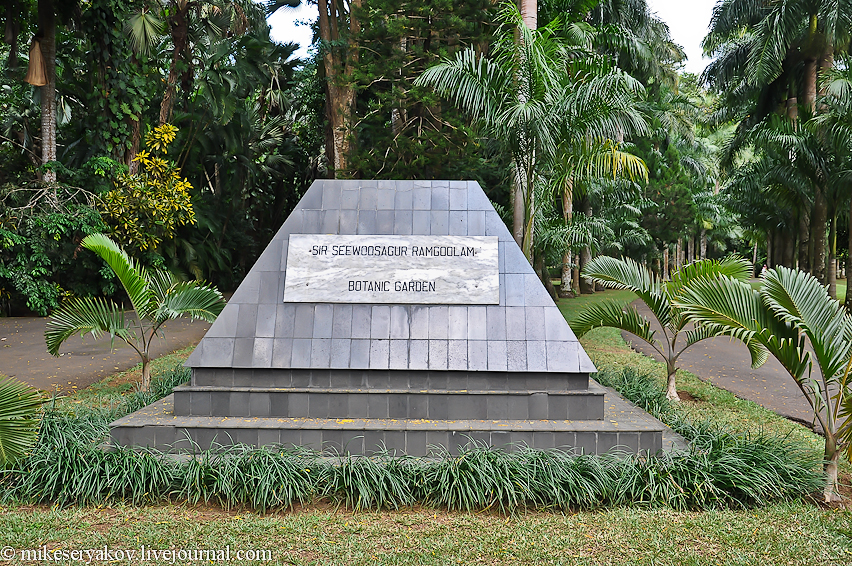Ботанический сад Памплемусс на Маврикии