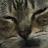 rose bugeja avatar image