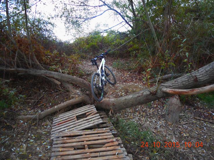 Rutas en bici. - Página 39 Guillena%2B24-10-15%2B005
