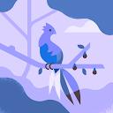 Abhishek Pachal