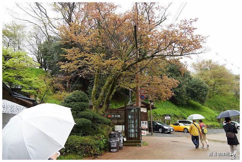 日本自由行景點推薦 – 一年四季都好看【京都大原 三千院】