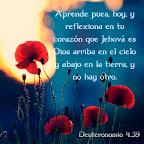Deuteronomio 4.39