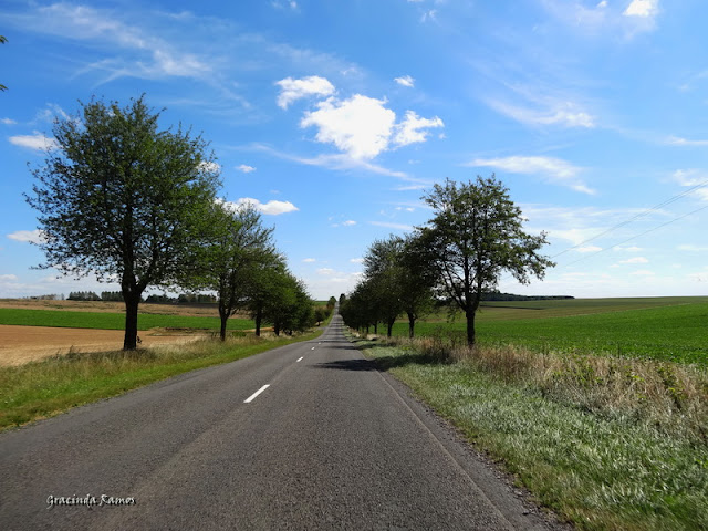 passeando - Passeando pela Suíça - 2012 - Página 25 DSC01814