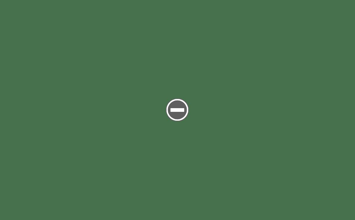 Fasan flexible slant IMG_1832%2B%28Custom%29