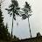 jason hostetter avatar image