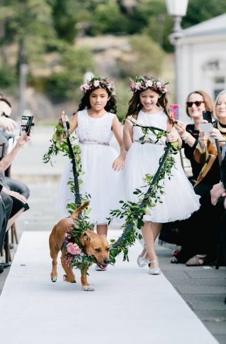 Pets with Flower Girls