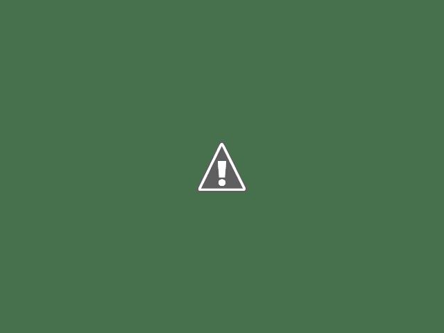 iris neobychnoj rascvetki