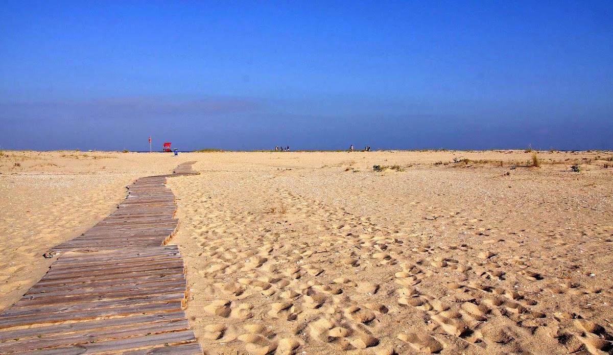 Isla de Armona, Algarve