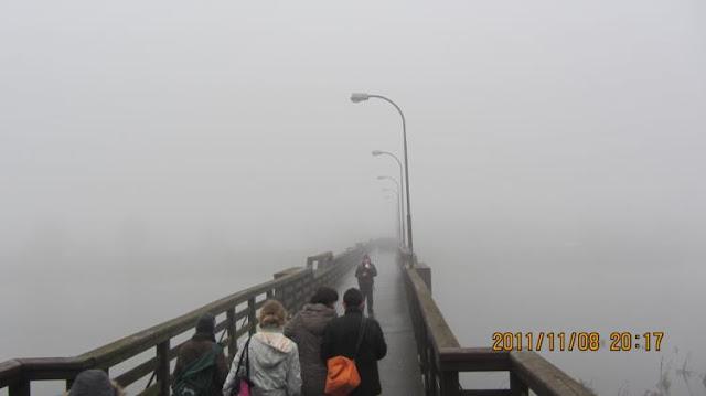 濃霧中的維士瓦河