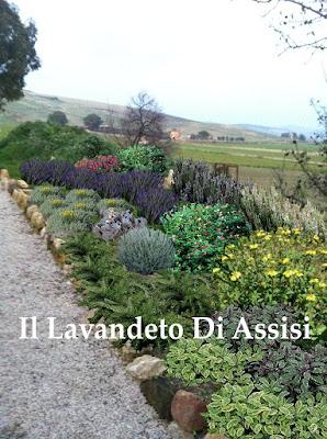 idee per aiuole piccoli giardini
