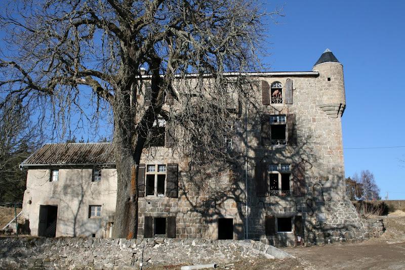 Le Manoir du Grail à Devesset en Ardèche sous l'ombre de son marronnier bi-centenaire