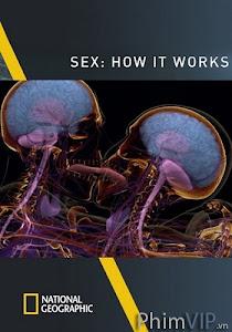 Hoạt Động Của Tình Dục - Sex: How It Works - National Geographic poster