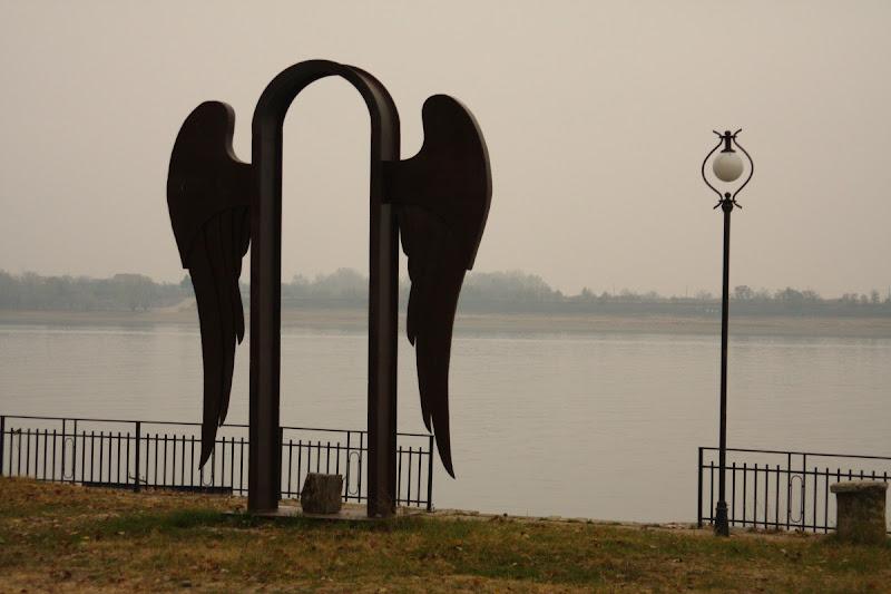 Mircea Dinescu Cetate Port cultura Oltenia conac arta contemporana Dunare