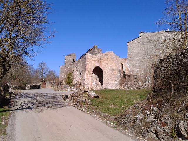 rando mixte 60/40 1er & 2 mars du Gard à Millau (boucle 450km) - Page 7 Photo-0017