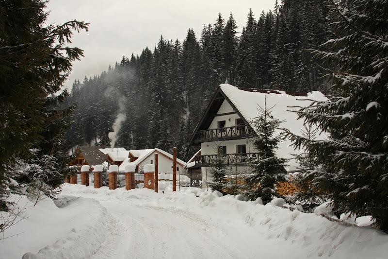 Covasna iarna Muntii Vrancei