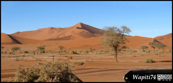Balade australe... 11 jours en Namibie - Page 2 IMG_0776