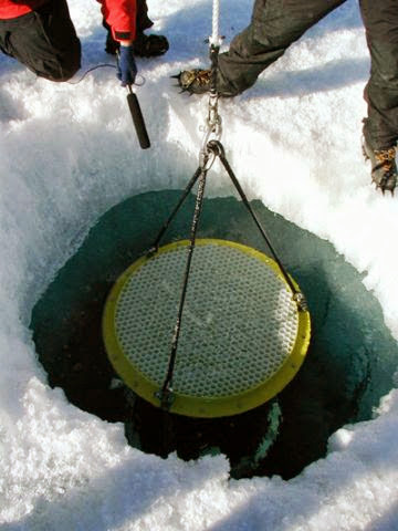 The top of the sediment trap seen in the ice hole in Lake Bonney, 2001.